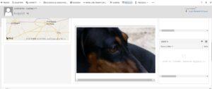 blogDM201810_8